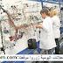 تشغيل 40 عاملة كابلاج بمصنع للسيارات بمدينة الحاجب