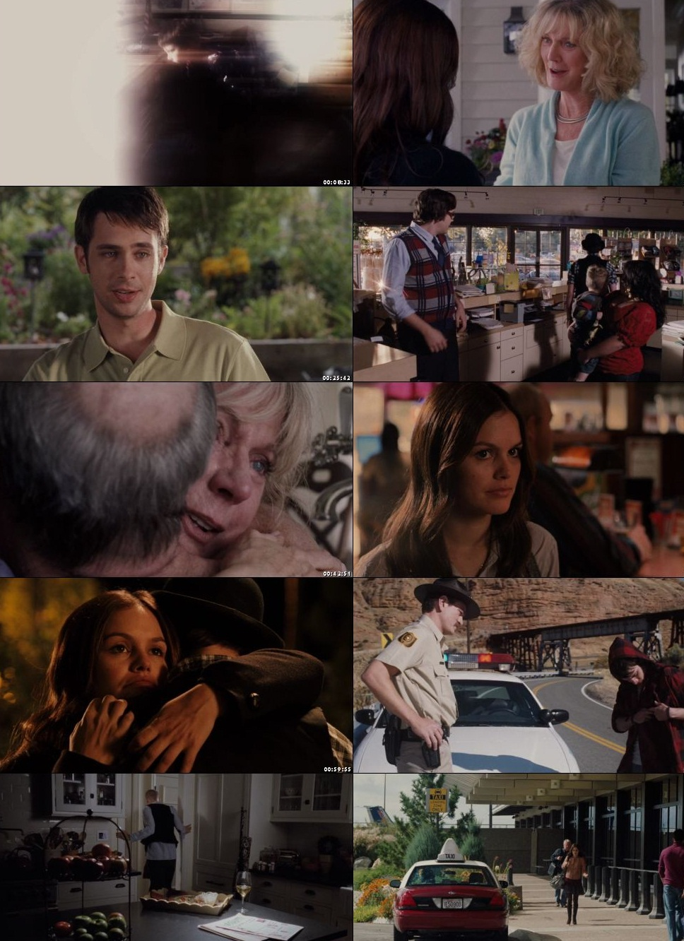 Waiting for Forever 2010 300MB Dual Audio 480p BRRip