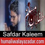 https://humaliwalaazadar.blogspot.com/2019/08/safdar-kaleem-nohay-2020.html