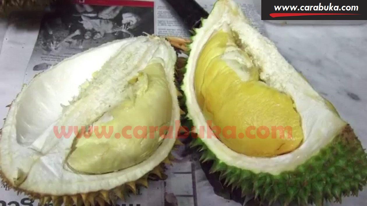 Tips Cara Memilih Durian Matang dan Manis 2