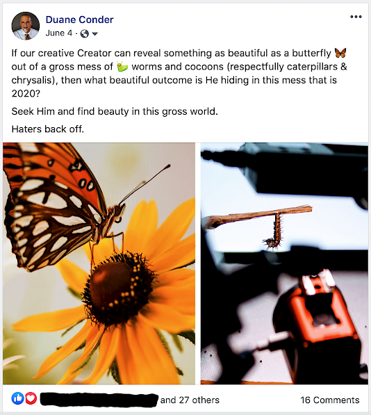 If our creative Creator can reveal something as beautiful as a butterfly out of a gross mess of worms and cocoons (respectfully caterpillars & chrysalis), then what beautiful outcome is He hiding in this mess that is 2020? Seek Him and find beauty in this gross world.