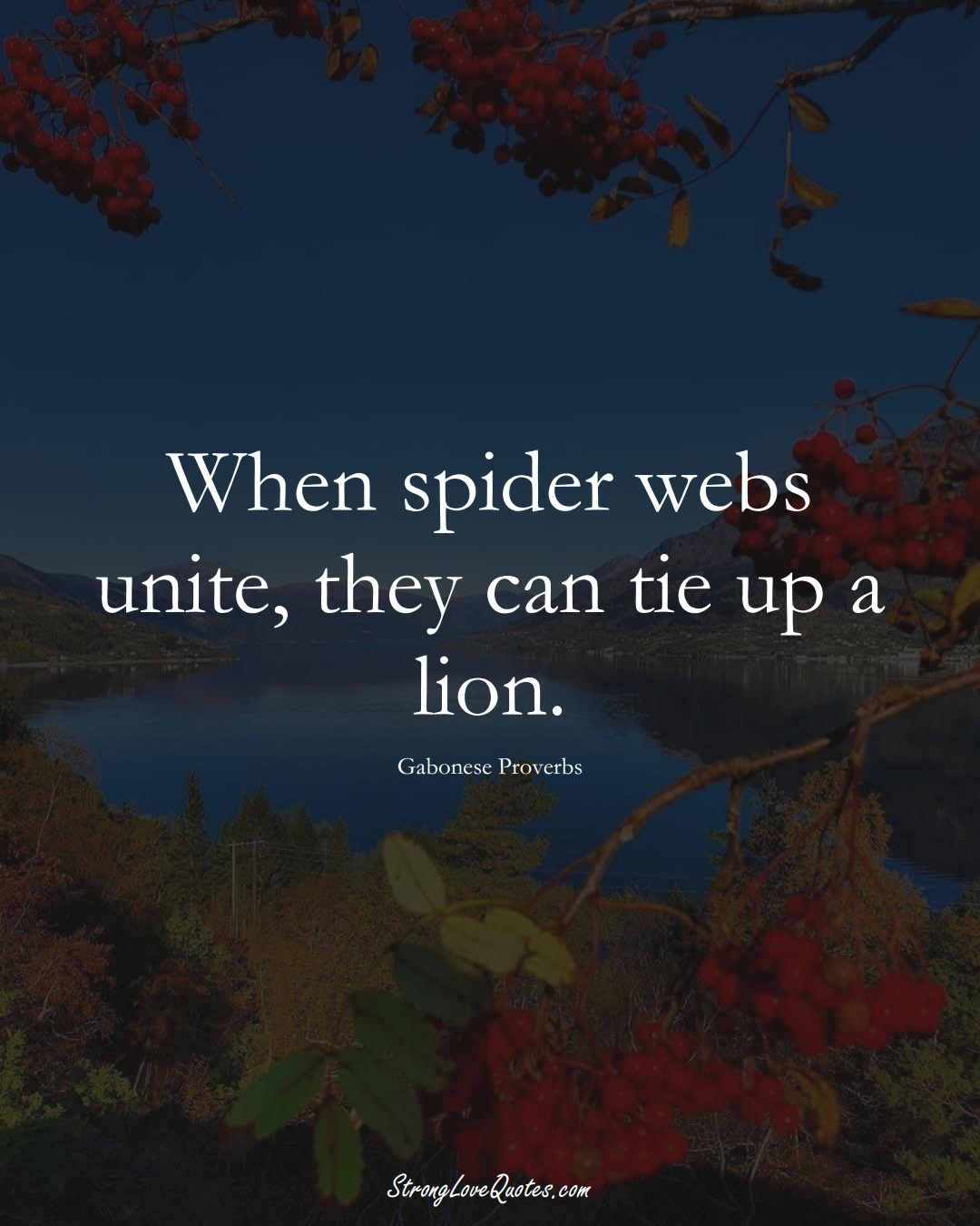 When spider webs unite, they can tie up a lion. (Gabonese Sayings);  #AfricanSayings