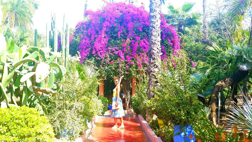Majorelle Garden Yves Saint Laurent