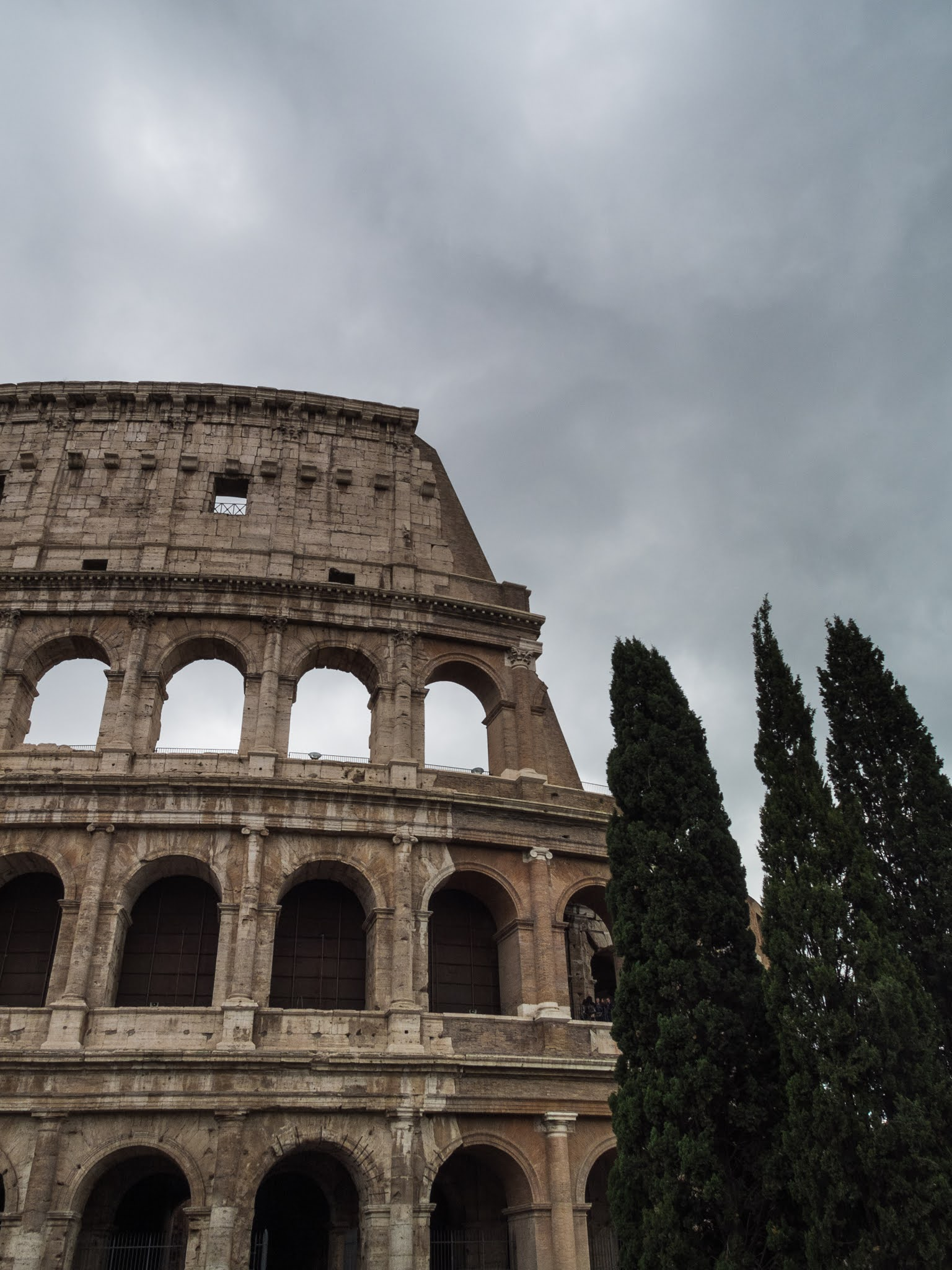 A grey sky above the Colosseum and three Cypress trees.