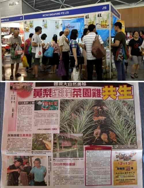 Nictar Bee pineapple farm - Food Fair