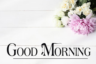 Good Morning Royal Images Download for Whatsapp Facebook15