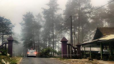 Ilustrasi kawasan hutan di Jahim
