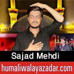 https://aliwalayazadar.blogspot.com/2020/08/sajad-mehdi-nohay-2021.html