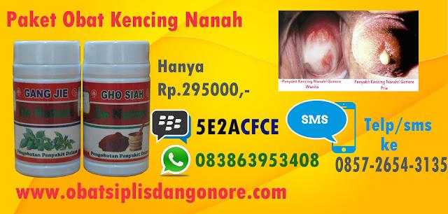 Obat Herbal Untuk Penyakit Kencing Nanah