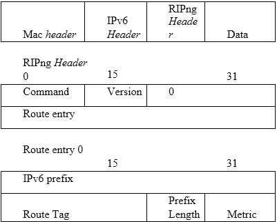 Gambar 4. Format RIP Header