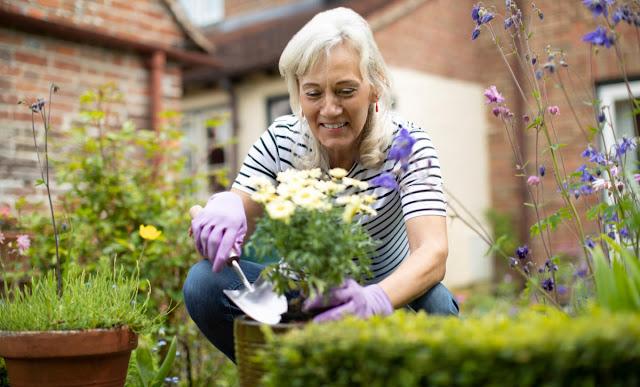 Best Way Making New Garden