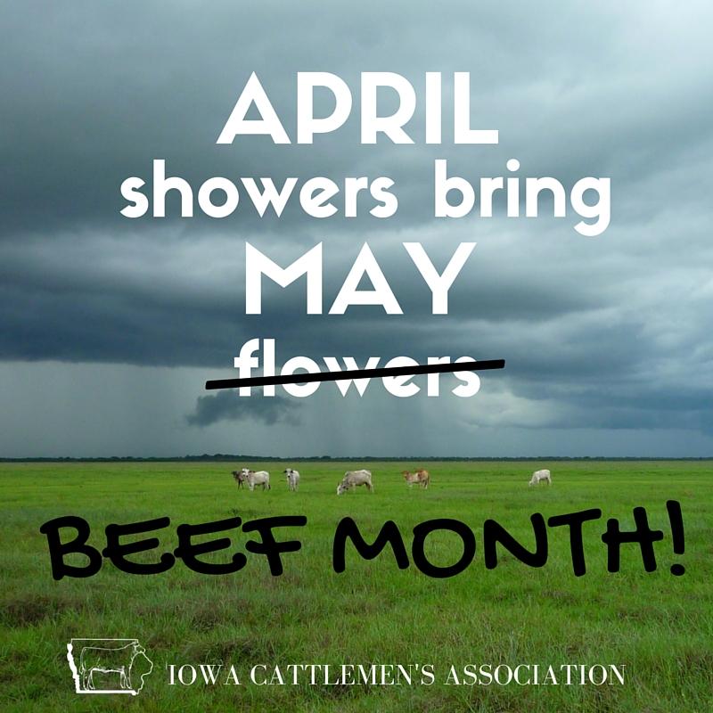 april showers short story summary