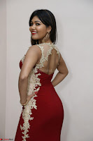 Rachana Smit in Red Deep neck Sleeveless Gown at Idem Deyyam music launch ~ Celebrities Exclusive Galleries 088.JPG