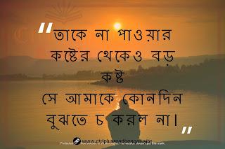 bengali sad shayari pic