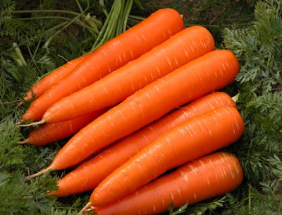 गाजर (Carrots)