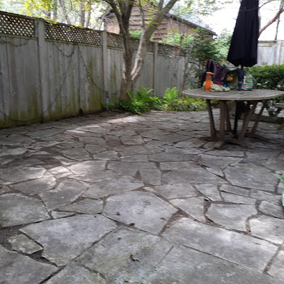 Toronto Back Garden Spring Cleanup After in Riverdale by Paul Jung Gardening Services--a Toronto Gardening Services Company