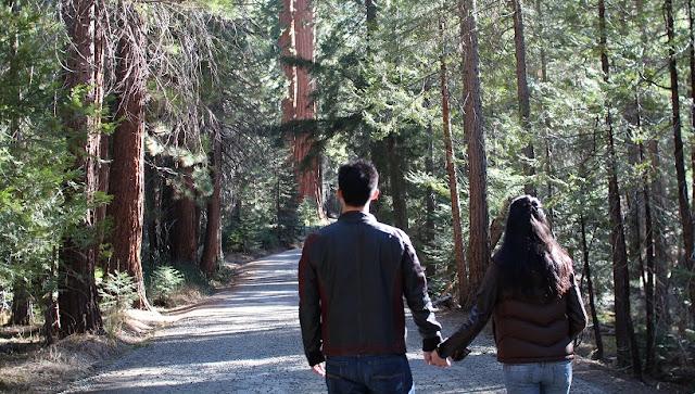 Visita ao Parque Nacional de Yosemite na Califórnia