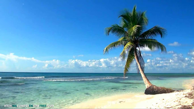 Relaxing Ocean Live Wallpaper Engine