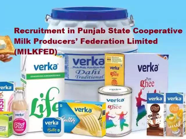 Verka Milkfed Punjab