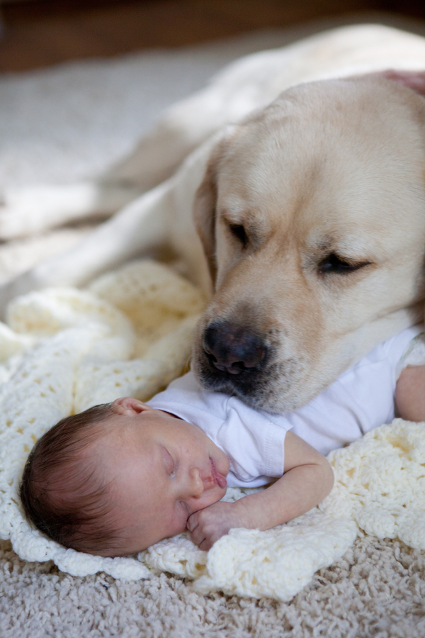 DAnna  Amie Fedora Photography IMG1077 low - Baby's Best Friend