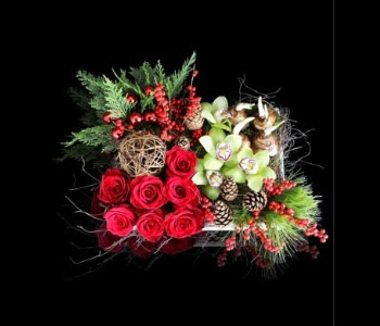 http://www.stapleton-floral.com/boston-flowers/holiday-array-626738p.asp?rcid=105200&point=1