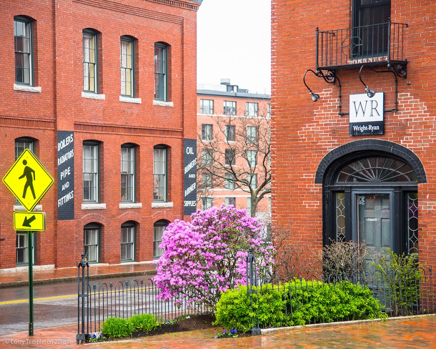 Portland, Maine USA May 2018 photo by Corey Templeton. A bit of color between the brick buildings at Danforth & York Streets.