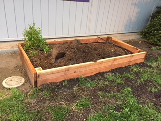 first grade raised garden