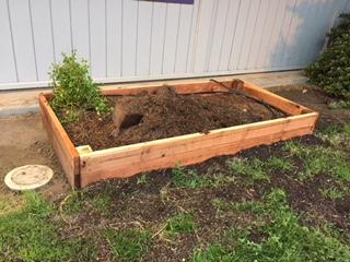 first grade raised garden