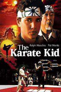 The Karate Kid 1984 Hindi Dual Audio Movies 480p