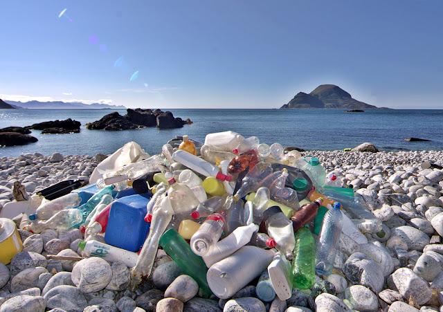 معلومات حول التلوث البيئي
