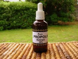 atau Lem Lebah yaitu suatu zat yang dihasilkan oleh lebah madu Manfaat Propolis dan Khasiat Melia