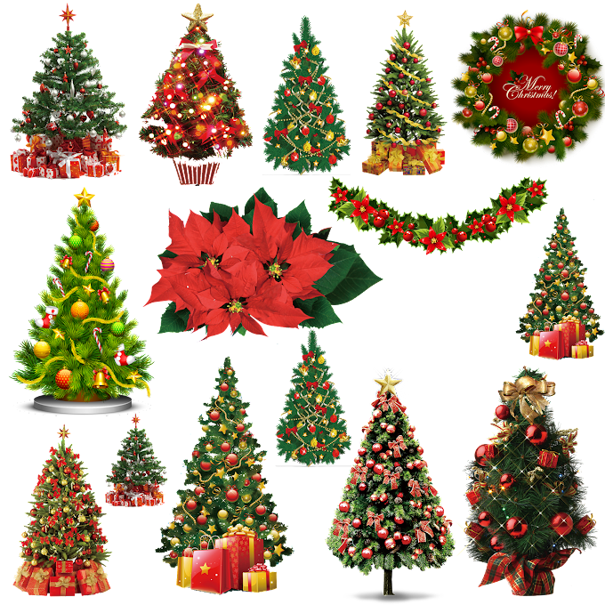 Christmas Tree free png by pngkh.com