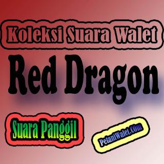 Suara Panggil Red Dragon