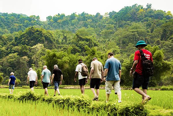 Randonnée au nord du Vietnam