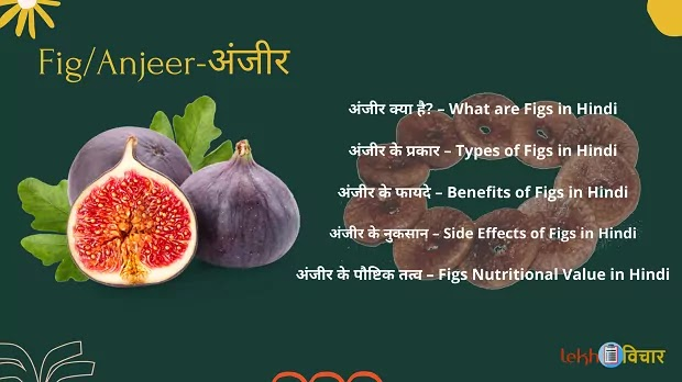 Do You Know the Advantages and Disadvantages of Eating Figs in Hindi