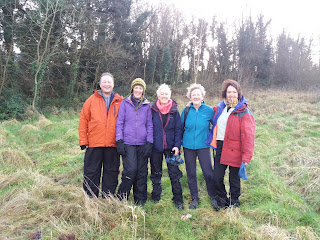 Members of Holey Soles walking club who run the Leitrim Glens Hill Walking festival