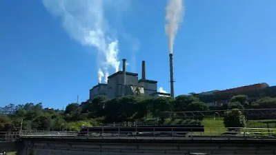 Future of Paper Industry in India & does it differ from chemical sector