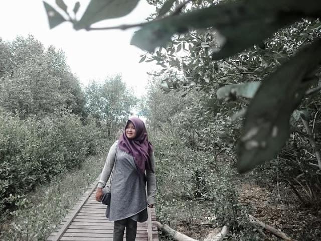 Hutan Mangrove pagatan besar