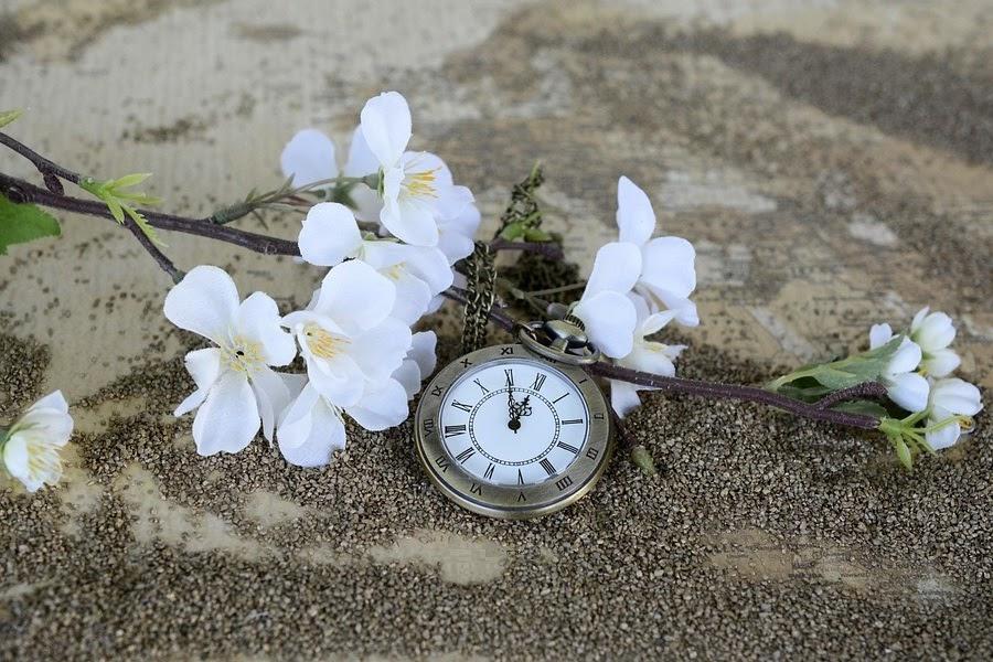 Relógio de bolso com flores brancas