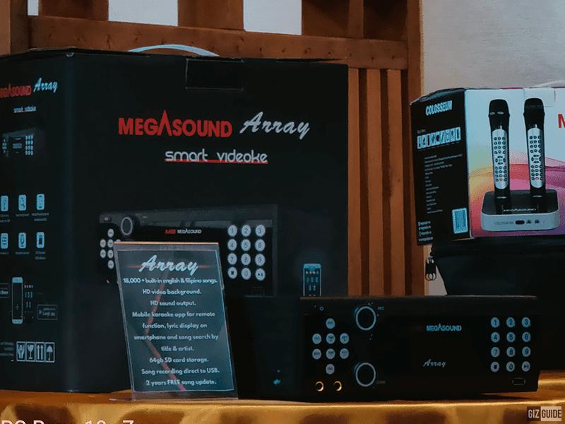 MegaSound Array