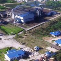 Loker Sawit - PT. Maju Kalimantan Hadapan Berhad Posisi Field Staff Panen (Dibutuhkan 5 Orang)