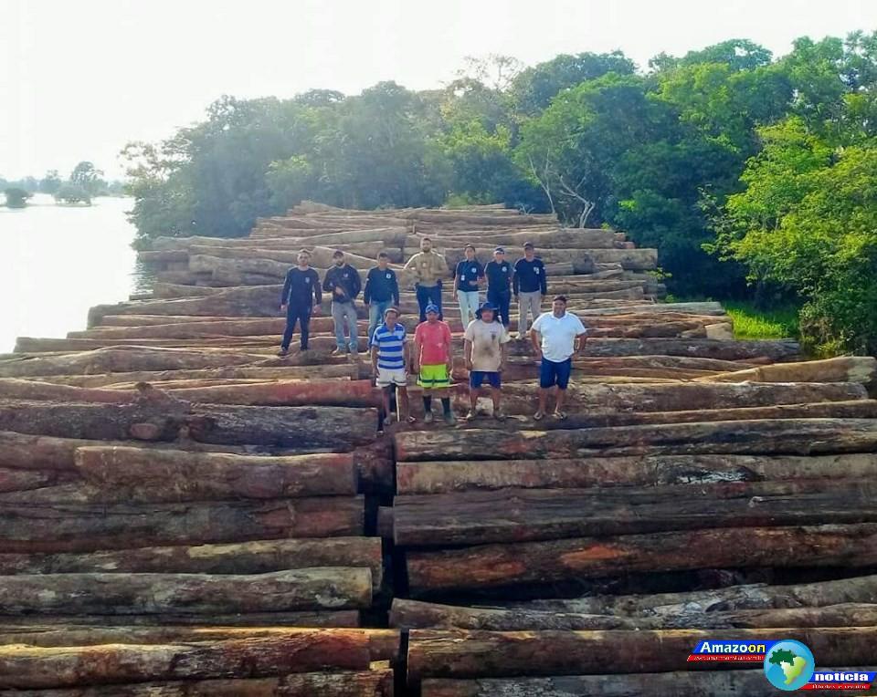 Operação da polícia Civil e SEMMA apreendem duas balsas com mais de mil toras de madeira de lei em Juruti