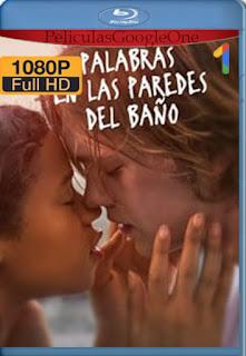 Words on Bathroom Walls (Palabras En Las Paredes) (2020) [1080p BRrip] [Latino-Inglés] [LaPipiotaHD]