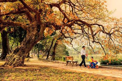 Nỗi nhớ mùa Thu- Nhật Quang