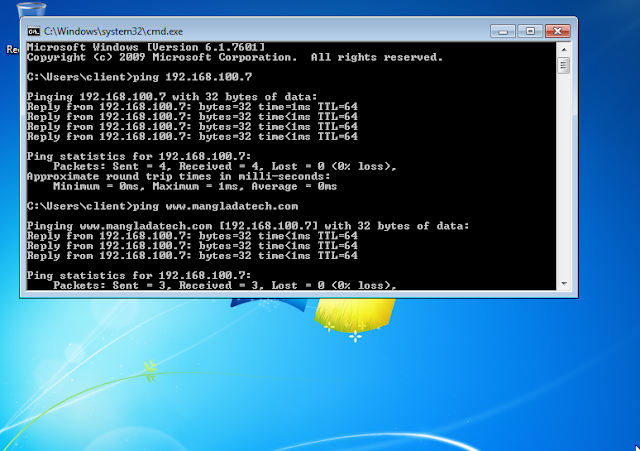 test ping dns server