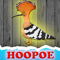 G2J The Hoopoe Rescue