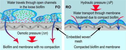Kỹ thuật kiểm soát ô nhiễm sinh học cho hệ thống nước tinh khiết