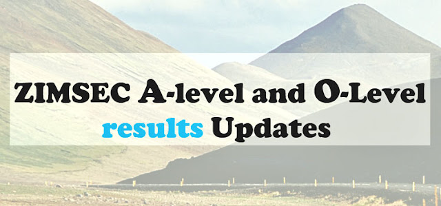 zimsec o level results 2021