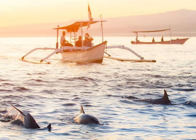 Keindahan Wisata Pantai Lovina Bali