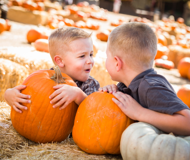 Fun Things To Do In Delaware County This Weekend For Families And Kids October 15th, 16th, & 17th
